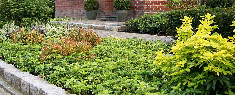 Het palet tuinontwerp kleine tuin for Kleine tuinontwerpen