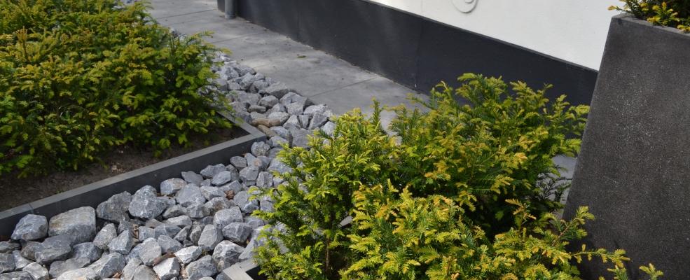 Het palet tuinontwerp moderne voortuin for Kleine tuinontwerpen