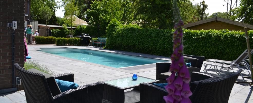 Het palet tuinontwerp achtertuin met zwembad for Zwembad achtertuin